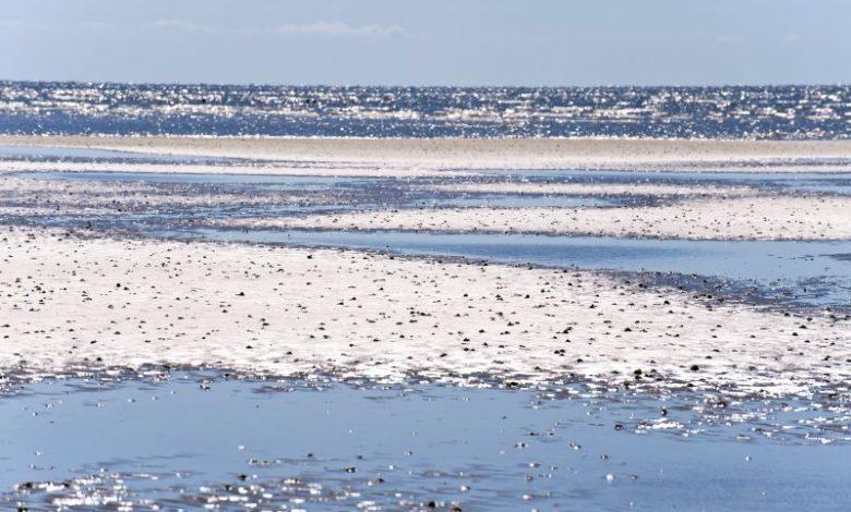 Photo of Besøg de smukke danske strande